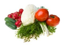 Heap Of Various Vegetables Stock Images