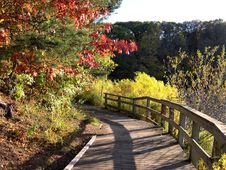Free Autumn Path Royalty Free Stock Image - 9265286