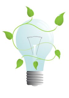 Bulb With Green Leaves Royalty Free Stock Image