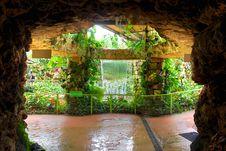 Free Botanic Garden. Royalty Free Stock Image - 9268106