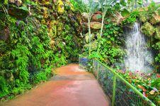 Free Botanic Garden. Stock Image - 9268161