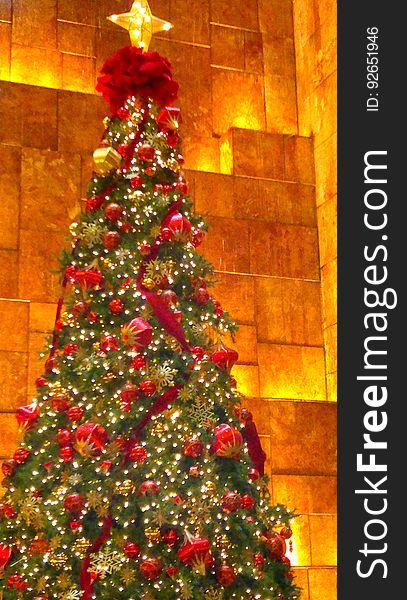 Christmas Tree, Plant, Christmas Ornament, Branch