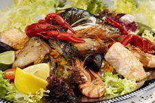 Free Fish Dish Royalty Free Stock Images - 9270249