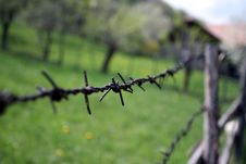 Free Barbed Wire Royalty Free Stock Photography - 9271567