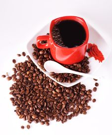 Free Cup Of Coffee Royalty Free Stock Image - 9273436