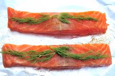 Free Raw Salmon Flesh Stock Image - 9273571