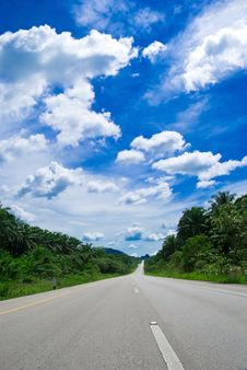 Free On The Road Royalty Free Stock Images - 9274359