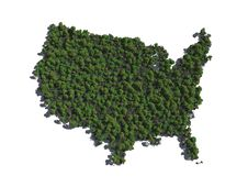 Free United States In Trees Royalty Free Stock Image - 9277396