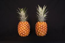 Two Pineapples Royalty Free Stock Photography