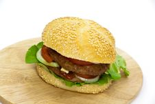 Free Hamburger With Lettuce,cheddar,tomato Royalty Free Stock Photos - 9278898