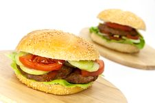 Free Hamburger With Lettuce,cheddar,tomato Royalty Free Stock Photography - 9278937