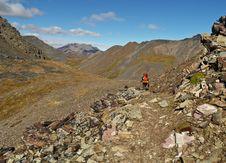 Free Grizzly Lake Trail Yukon Stock Images - 9279764