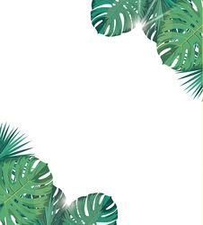Free Tropic Leaves With Sunshine. Tropic Background. Royalty Free Stock Photos - 92704498