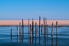 Free Brown Wooden Pole With Seagull In The Blue Ocean Stock Image - 92752891