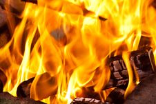 Free Flame Stock Photo - 9281190