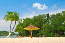 Free Coconut Trees And Hut Royalty Free Stock Image - 9282476