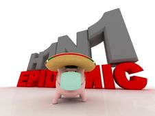 Pig In A Sombrero Royalty Free Stock Image