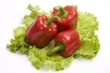 Free Red Sweet Peppers Royalty Free Stock Photography - 9289367