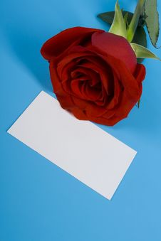 Free Rose And Card Royalty Free Stock Photos - 9289768
