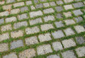 Free Stones And Grass Stock Images - 9295684
