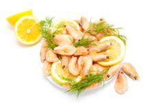 Free Prawn Stock Images - 9291034