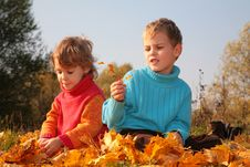 Free Children Sit On Fallen Maple Leaves Stock Photo - 9291110