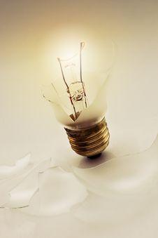 Free Crushed Lightbulb Royalty Free Stock Images - 9291139