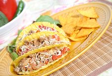 Free Mexican Food Royalty Free Stock Photos - 9291878