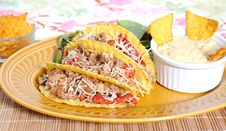 Free Mexican Food Stock Image - 9291931