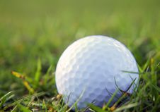 Free Golf Ball In Rough Grass Stock Image - 9293981
