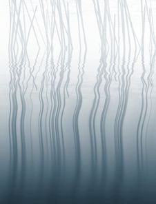 Free Water Reed Background Royalty Free Stock Image - 9294026