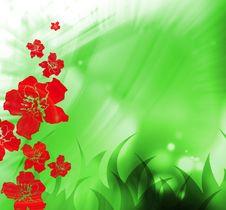 Free Flower Background Stock Images - 9294414