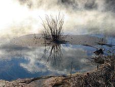 Free Geothermals, Kuirau Park, Rotorua, New Zealand Royalty Free Stock Photo - 9296435