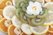 Free Selection Of Fruit Royalty Free Stock Image - 9297596