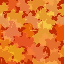 Seamless Maple Leaf Pattern Stock Images