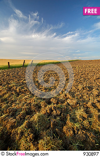 Free Agricultural Landscape Royalty Free Stock Photography - 930897