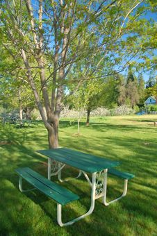 Free Verdant Spring Landscape Stock Photo - 931140