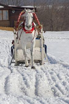 Free Winter Holiday Stock Photo - 933170