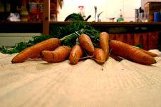 Free Carrots Royalty Free Stock Photo - 934115