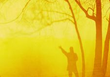 Free Shadow Of A Man Waving And Trees Against A Yellow Wall In The Evening Sun Stock Photo - 935640