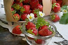 Free Juicy Strawberry Royalty Free Stock Image - 936266
