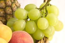 Free Grape Detail Stock Images - 937204
