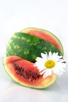 Free Watermelon Portrait Stock Photo - 937730