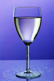 Free Wine Stock Photo - 938550