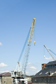 Free White And  Yellow Cranes Stock Images - 938734