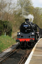 Free Steam Train Stock Photo - 9302510