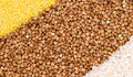 Free Millet, Buckwheat, Rice Background Royalty Free Stock Image - 9304996