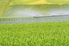 Free Irrigation In Green Backgorund Royalty Free Stock Image - 9301156