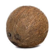 Free Coconut Stock Photos - 9301693