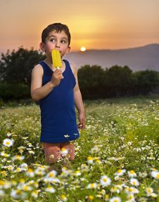 Free Young Boy Having An Popsicle Royalty Free Stock Image - 9301696